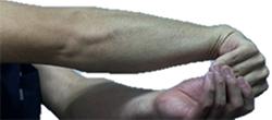 手首、指を動かす筋肉のストレッチ